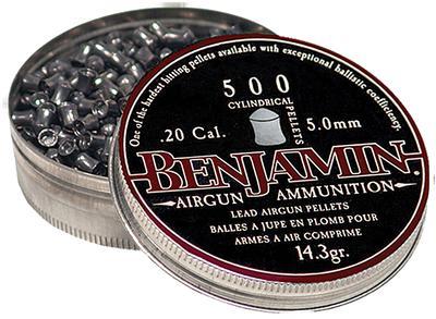 BENJAMIN HUNTING PELLETS