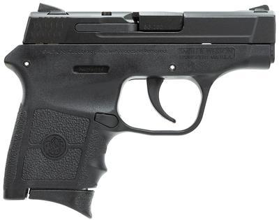 S&W 109381 M&P Bodyguard 380 ACP 2.75
