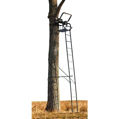 THE ODYSSEY  20FT LADDERSTAND